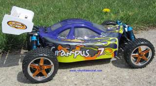 10 RC GRAMPUS  PRO 2.4G Brushless Electric Race RC Buggy /Car
