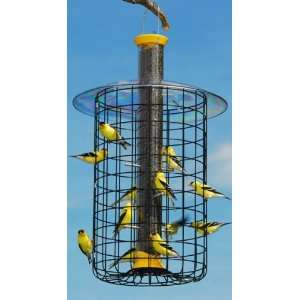 Droll Yankees Nyjer Domed Caged Feeder