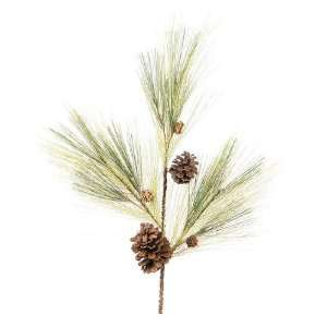 Club Pack of 12 Christmas Greens Pine & Pine Cone Decorative Winter